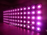 RGB 3in1 다중 색깔 매트릭스 LED 효력 빛