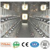 Grande capacité de matériel de volaille une cage de ferme de poulet à rôtir de batterie
