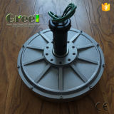 Осевой генератор постоянного магнита Pmg Coreless потока с Ce
