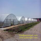 Лучшая цена сельскохозяйственных/коммерческих пластиковые выбросов парниковых газов для продажи