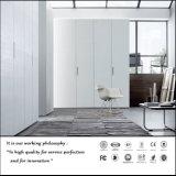 De witte UV Hoge Glanzende Garderobe van de Deur van de Schommeling (FY897)