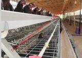 La jaula de la capa de la batería de pollo a la venta para Nigieria