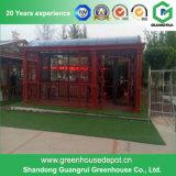 현대 유형 유리제 정원 온실
