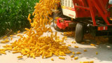 Macchina della raccolta di cereale dell'azienda agricola con la testa di taglierina di quattro righe