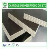 madeira compensada impermeável do núcleo do Poplar de 4X8FT para a construção
