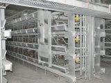 Neuer h-Rahmen-Typ Ei-Henne-Huhn-Rahmen-Gerät