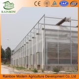 Sale를 위한 PC Board Greenhouse 또는 Commercial High Tunnel Greenhouse