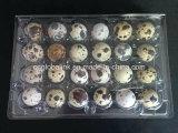 使い捨て可能なプラスチック卵の皿のまめの包装のクラムシェルの包装のウズラの卵の皿6/12/18/20/24/30の穴のセルAcounts