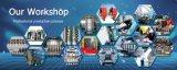 Automatischer HDPE pp. Plastikflaschen-Blasformen-Maschinen-Strangpresßling-durchbrennenformenmaschine