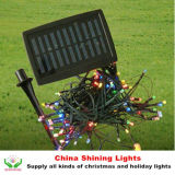 Les meilleurs éclairages LED de Selling Christmas Holiday Solar Panel dans Varies Colors