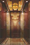 豪華な車が付いているホテルの乗客のエレベーター