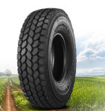 Aeolus Brand Tyre, Linglong, Yellowsea, Chengshan Truck Tyre