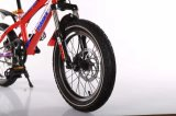18 Inch Walking Kids Bicycle / Baby Bike / Children Bicicleta / Crianças Bicicletas / Balance Bike