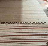 madeira compensada Recon da estratificação da madeira compensada da face do Poplar de 6mm