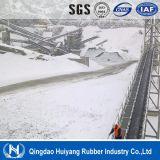 - 40 gradi Cold Resistant Conveyor Belt per la zona frigida