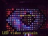 Gordijn van de LEIDENE RGB Lichte Ster van de Visie met Kleurrijk