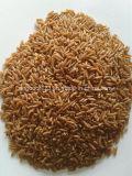 Trieuse de couleur de grande précision de CCD pour le riz rouge