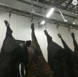 Bestiame che macella la riga linea di macello del trasportatore di spurgo