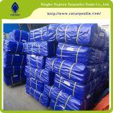 Китай PE тент на заводе полимерная лист 170GSM синий ламинированные брезентом