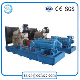 Motore diesel per la caldaia che alimenta la pompa ad acqua a più stadi