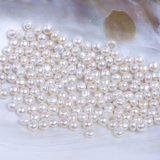7-7.5mm Half Drilled Freshwater Pearl Button Shape for Earring Ring