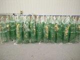 Поддержка завода клетки томата для рынка Канады