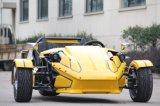 250cc Antrieb Trike mit Windshiled und hinterer Störklappe