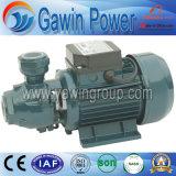 0.37kw voor Pomp van het Water van de Verkoop Kf/0 de Elektrische Schone