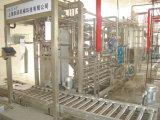 Machines Van uitstekende kwaliteit van de Productie van het Sap van de Draai van China de Zeer belangrijke voor de Tropische Guaven van Vruchten, Banaan, Papaja, Mango, Kokosnoot