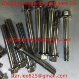 Aço inoxidável 304 DIN933 Hex Parafuso