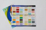 Brochure personnalisée en couleur pliée d'impression de peinture
