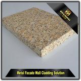 زخرفيّة تقليد حجارة حبّة ألومنيوم جدار [كلدّينغ بنل] تصميم