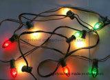 C7C9 Partie des lumières décoratives de feux de lumières de Noël de l'ampoule de chaîne