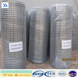 Rete metallica saldata ricoperta PVC della fabbrica 25X25mm 25X50mm
