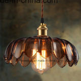 De Lamp van de Tegenhanger van de Levering van de fabriek met Zes Kleuren voor de BinnenDecoratie van de Verlichting