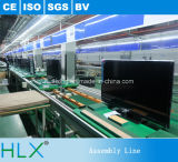 LCD van de Ketting van het Roestvrij staal van de dubbel-rij de Transportband van TV