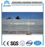 Proyecto de acrílico claro de la piscina de la pared de cristal