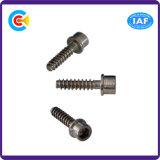 Acciaio al carbonio di DIN/ANSI/BS/JIS/zoccolo di esagono galvanizzato 4.8/8.8/10.9 di acciaio inossidabile con la vite di spillatura interna