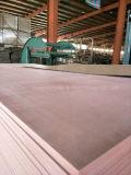 De Brand van de isolatie - vertragersRaad 1220mmx2440mmx25mm Rang b1-c E1