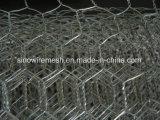 Het Netwerk van het Kippegaas of het Hexagonale Opleveren van de Draad