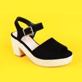 Tallone della punta nera di pigolio delle signore l'alto incunea le scarpe di tela dei sandali