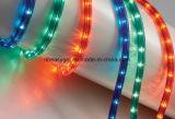 Des LED-Seil-Licht-LED flexible Farbe Streifen-Beleuchtung 10m-32.8 FT 5050 RGB 300LEDs, die vollen Installationssatz mit 44 Schlüssel IR-Ferncontroller, Steuerkasten ändert