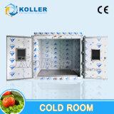 Conservazione frigorifera dei pesci del surgelatore