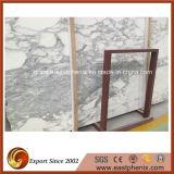 内部および外部の装飾のためのCalacattaのインポートされた白い大理石の平板