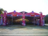 Décoration 2017 rayant la tente extérieure d'usager de chapiteau pour l'événement