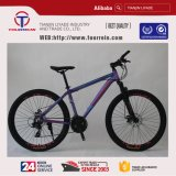 21 속도 Bycicle 탄소 프레임 산악 자전거