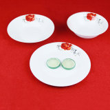 手塗りの赤いローズの陶磁器の版またはディナー・ウェアセット