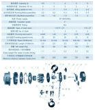 2 Hijstoestel Van uitstekende kwaliteit van de Keten van de ton het Elektrische met SGS