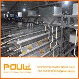 Las aves de corral automáticas de la fuente de la fábrica de Jaula De Pollo China enjaulan para el pollo del pollo