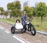 ثلاثة عجلة كهربائيّة عربة درّاجة
